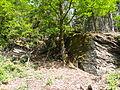 Felsen in der Dehl (Hoch-Weisel) 08.JPG