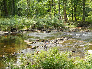 Pennypack Creek - Pennypack Creek near Fetter's Mill.