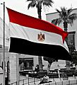 Flag of Egypt-2013.JPG