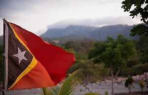 Flag of East Timor - Flying flag of East Timor