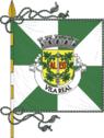 Flag of Vila Real.png