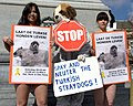 Flickr - NewsPhoto! - Uit de kleren voor Turkse zwerfhonden.jpg