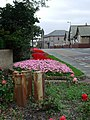 Flower beds, Gibson Street, Newbiggin by the Sea - geograph.org.uk - 1458448.jpg