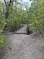 Footbridge, Tűzkő Hill Park Forest trail, 2017 Budaörs.jpg