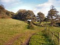 Footpath merging with farm track by Coed Tonmawr - geograph.org.uk - 999384.jpg