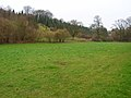 Footpath to Hill Lands Farm - geograph.org.uk - 341713.jpg