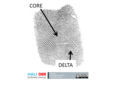 Forensic finger print 1 (7550742590).png