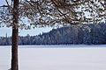 Framed winter scene (6843232749).jpg