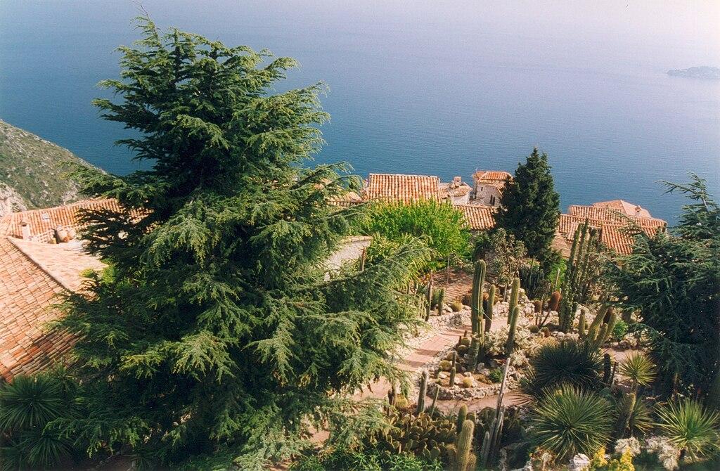 File france alpes maritimes eze jardin botanique for Jardin 05
