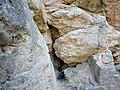 Francia-bánya 2. sz. barlangja2.jpg