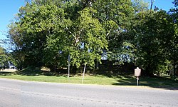 Frogmore Mound Site HRoe 2011 01.jpg