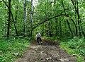 G. Miass, Chelyabinskaya oblast', Russia - panoramio (130).jpg