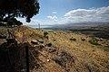 Galilee - Israël (4675315120).jpg