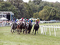 Galopprennbahn Niederrad Pferderennen 2.jpg
