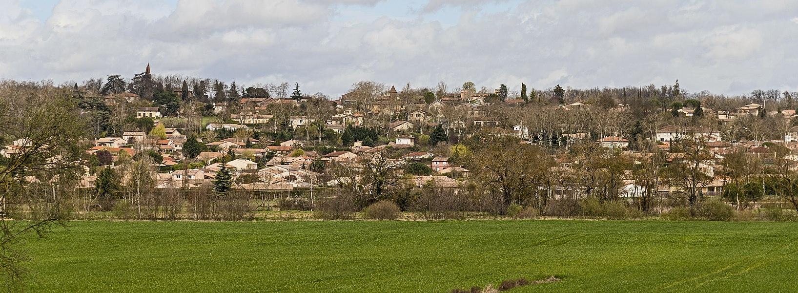 English:  Garidech, Haute-Garonne, France. South exposure.