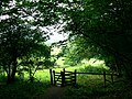 Gate on the Cotswold Way, near Dyrham - geograph.org.uk - 478720.jpg