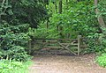 Gate to woodland - geograph.org.uk - 1384865.jpg