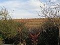 Gateway Spring Creek Park 49 - Fountain Av Landfill.jpg