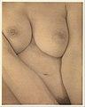 Georgia O'Keeffe — Breasts MET DP232995.jpg