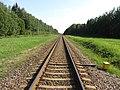 Gerviškių sen., Lithuania - panoramio (7).jpg