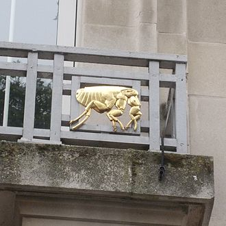 London School of Hygiene & Tropical Medicine - Balconies at the front of the building are decorated with gilded disease vectors, here a flea (for bubonic plague).