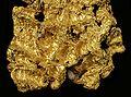 Gold-cat17c.jpg