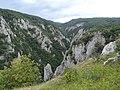 Gorges de Zadiel (agost 2012) - panoramio (7).jpg