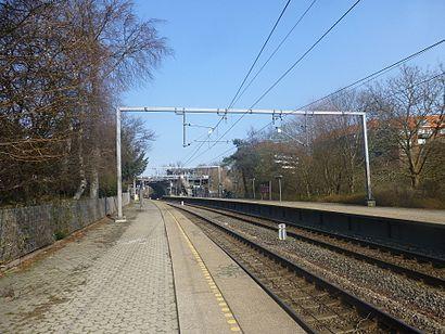 Sådan kommer du til Grøndal St. med offentlig transport – Om stedet