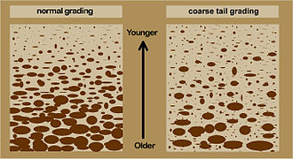 Graded bedding - Schematic illustrations of two styles of graded bedding: left: normal grading; right: coarse tail grading.