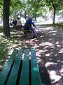 Gradski park Leskovac 05.jpg