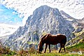 Gran Sasso - italy (36588934833).jpg
