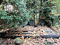 Grave of Żołtek Family - 01.jpg