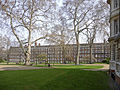 Gray's Inn Gardens, London WC1.jpeg