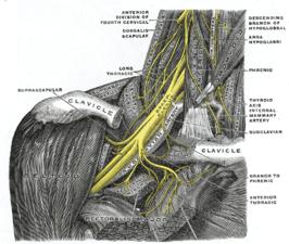 cervicobrachiaal syndroom behandeling