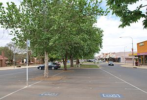 Griffith, New South Wales - Banna Avenue, Griffith
