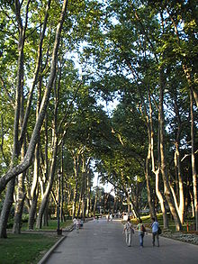 G 252 Lhane Park Wikipedia