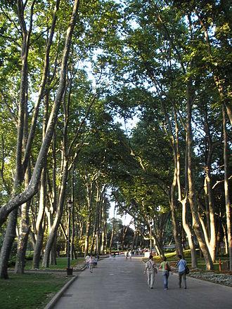 Gülhane Park - Gülhane Park