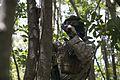Guns blazing, 1-3 completes MOUT training 140827-M-TF269-071.jpg