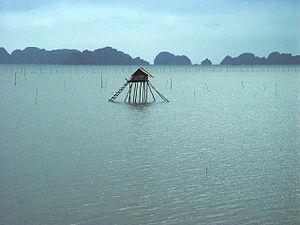 Hạ Long Bay - Fisherman's house, Ha Long Bay, Vietnam