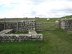 Hadrian's Wall at the Knag Burn northeast of Housesteads Fort - geograph.org.uk - 1495123.jpg