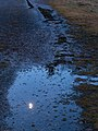 Half moon reflected in puddle.jpg