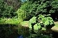 Harris Garden Pond.JPG