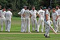 Hatfield Heath CC v. Thorley CC on Hatfield Heath village green, Essex, England 30.jpg