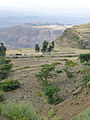 Hauts plateaux d'Ethiopie-Région Amhara (24).jpg