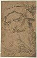 Head of a Bearded Old Man Wearing a Laurel Crown MET DP211523.jpg