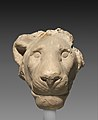 Head of a lion MET DP323402.jpg