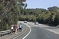 Helensburgh NSW 2508, Australia - panoramio (36).jpg
