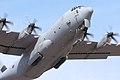 Hercules - RIAT 2006 (2456985281).jpg