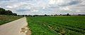 Hessen, Germany. Railroad Worms-Hofheim, east of the Rhine bridge. - panoramio.jpg