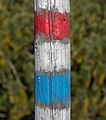 Hiking signs on a wooden stick - Jeseniky, Czech Republic 15.jpg